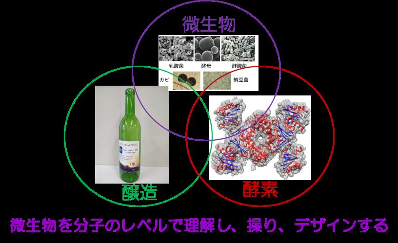 微生物の力を利用した技術革新を目指し、健康かつ豊かで質の高い生活の実現を目指す