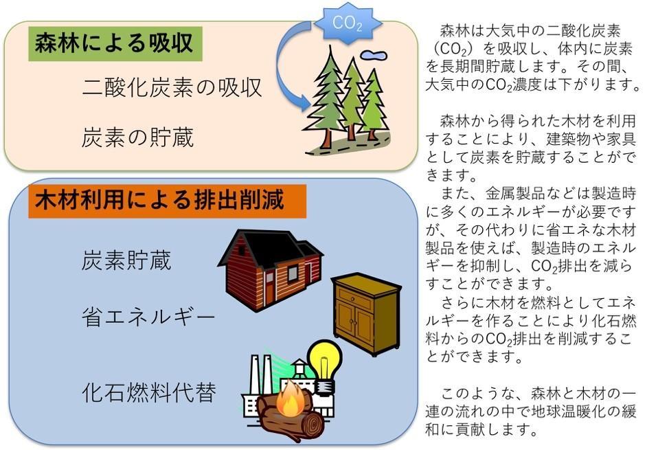 森林を利用して気候変動を抑制する