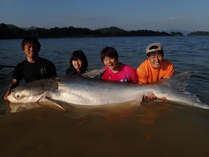 持続的漁業に向けた魚類の行動解析