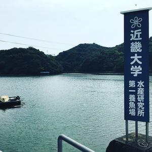 水研.jpg