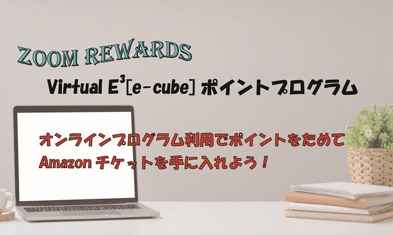 Virtual E3[e-cube]ポイントプログラム
