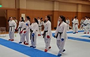 201907_karatedobu-mexico2.jpg