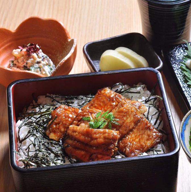 Kinki University Farms Catfish That Taste Like Eel