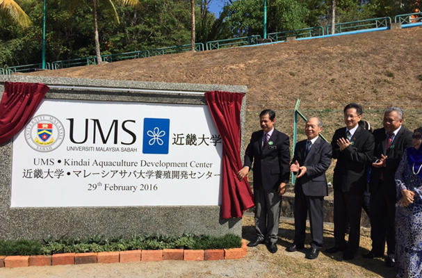 Kinki University to study 'full farming' of Southeast Asian eels with Malaysian school(Source: The Japan Times)