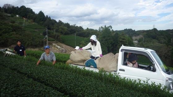 奈良市農家民泊モニターツアーに農学部生を派遣 農業体験や農家民泊を通じて、地域農業について学ぶ