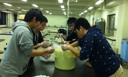 農学部の学生が日本の伝統的な食品保存・加工技術を継承 「ふなずし」の本漬け体験実習を実施