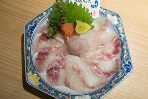 高級魚「クエ」と「タマカイ」の良さを併せ持つハイブリッド 「クエタマ」を直営店にて数量限定で初提供