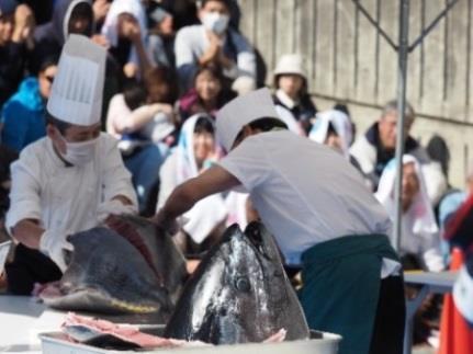 第51回農学部祭(第29回飛鳥祭)開催 人気企画マグロの解体ショーを実施