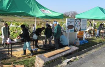 ~イモが地球を救う!~ 空中栽培によるサツマイモ収穫祭が開催されます