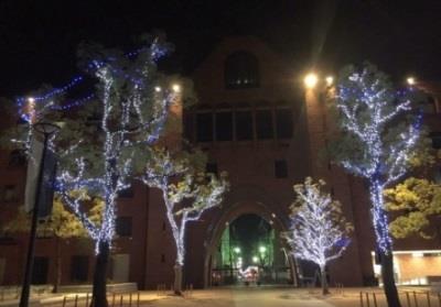「イルミネーション点灯式」開催 LEDを使用したイルミネーションでキャンパスをクリスマスムードに