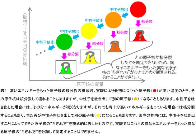 """核分裂における原子核のさまざまな""""ちぎれ方""""を捉える -放射性物質の毒性低減に貢献-"""