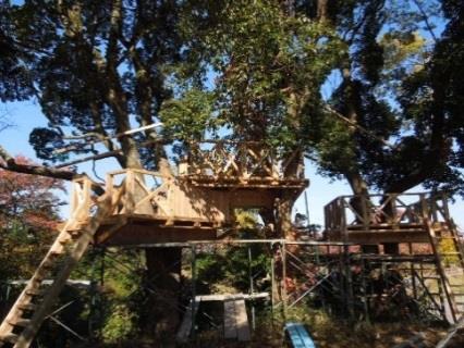 小学校にツリーハウス「森のひみつきち」が誕生! 建築学部の学生がツリーハウスを建設