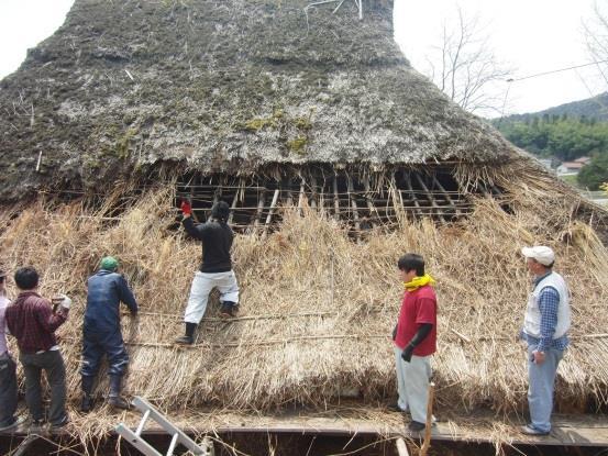 茅葺き屋根の葺き替えワークショップ 建築学科の学生が挑む「かやぶき古民家保存・再生プロジェクト」