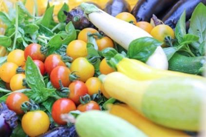 学生が育てた野菜を販売する「近大マルシェ」を開催 新鮮な野菜を東大阪キャンパスで販売