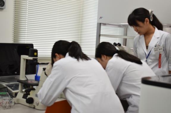高校生対象の再生医療オープンラボを開催 iPS細胞の観察や電子顕微鏡の操作体験で医学を身近に