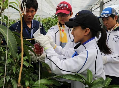 農業の魅力を肌で感じる! 近畿大学附属農場で中学生が農場見学・体験学習