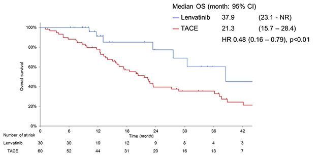 難治性の肝細胞がんに対して世界初の画期的な根治治療法を開発 肝細胞がんの標準治療確立へ道筋