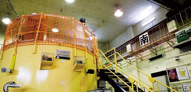 海外の若手研究者・技術者を対象とした研究炉スクールを開催 アジア・太平洋地域の原子力人材育成に貢献