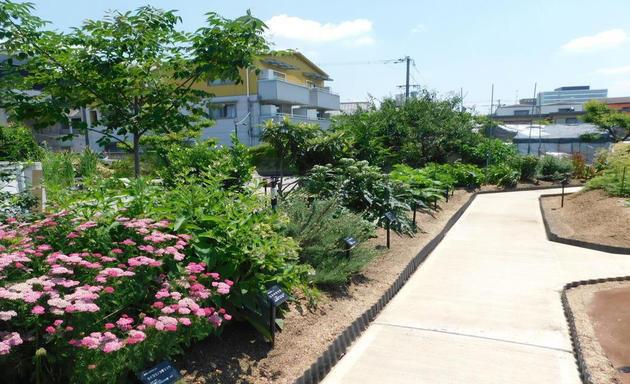 第8回薬用植物園見学会 講演「自然に学ぶ、知って得する薬草と健康のお話」実施