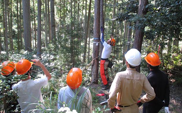 中高大連携森林学習プロジェクトを開催 イベントを通して森林や林業について考える機会に