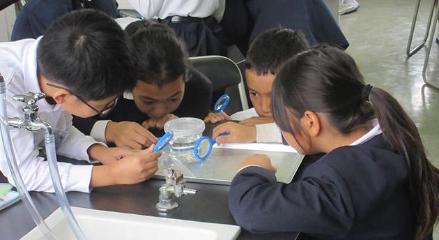 東広島市の小中学生を理数好きに! 東広島市と大学が小学校での体験型授業で「科学の芽」を育成