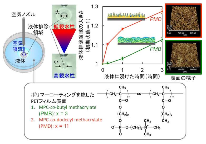 生体接触型医療機器コーティング材料の新しい評価法 -ポリマーコーティングの2段階の水和挙動を簡単に検出-