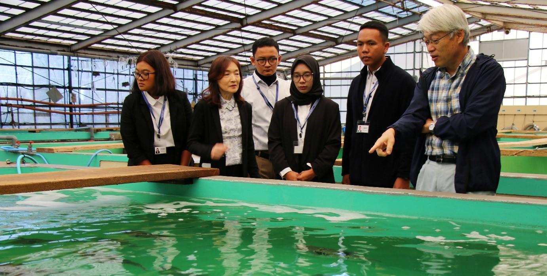 インドネシア企業の社員が9カ月間の研修成果を発表 水産研究所・水産養殖種苗センターにおいて養殖技術指導