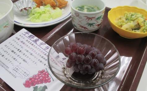 農学部食品栄養学科×近畿大学奈良病院「食事満足度向上プログラム」 とれたての地元奈良県平群町産ブドウを病院食として提供