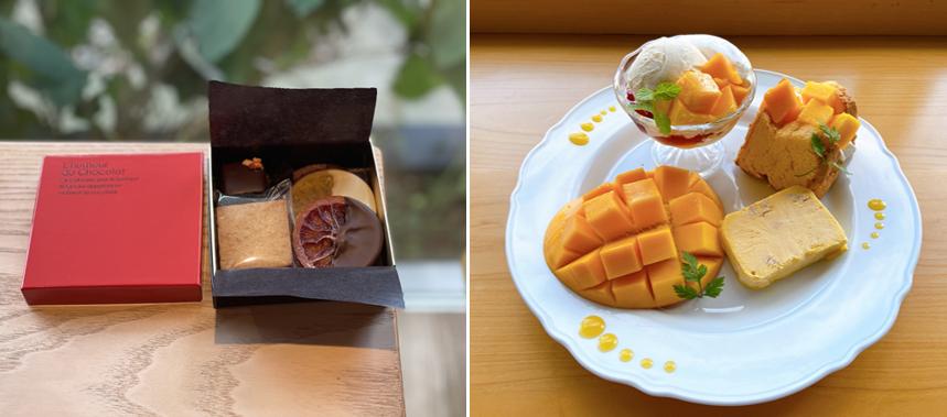 附属農場産「近大柑橘」「近大マンゴー」使用のスイーツを地元・和歌山で人気のカフェ「toco*towa DELI」などで販売