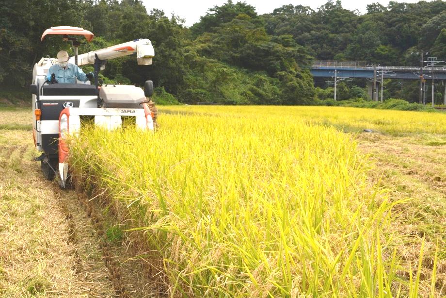 コロナ禍で苦しむ大学生を「地産地消」で支援 JA広島中央女性部が地元農家の協力で集めた米を大学に寄贈