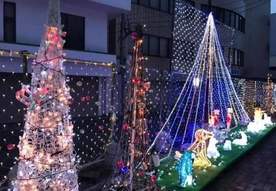 学生がイルミネーションの設置活動に参加 飯塚市を一足早くクリスマスの雰囲気で盛り上げる