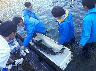 高校生が育てたチョウザメから初のキャビアを実食 近畿大学水産研究所の教員から学ぶ「水産養殖基礎講座」