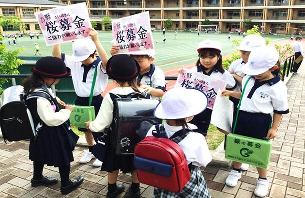 小学校児童が「吉野の桜募金運動」を実施 一目千本の桜を守るため2年生代表が「吉野の桜を守る会」に贈呈