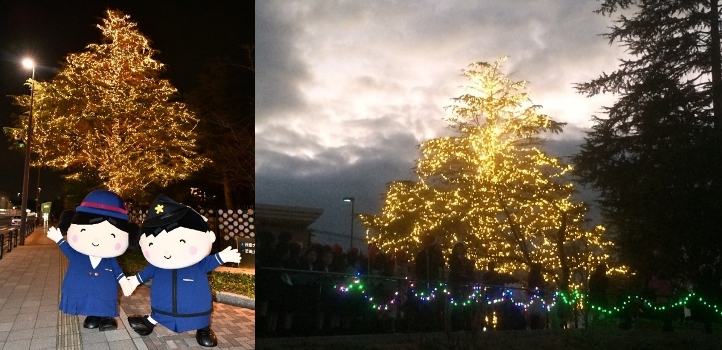 近畿大学附属小学校のウィンターイルミネーションが復活 約20mのツリーが照らす心温まる光で地域に元気と癒しを届ける