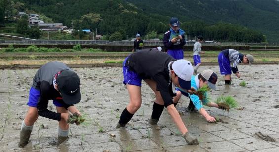 中学生が熊野川町で田植えを体験 「紀伊半島大水害」の復興地域で「ふるさと教育」を実施