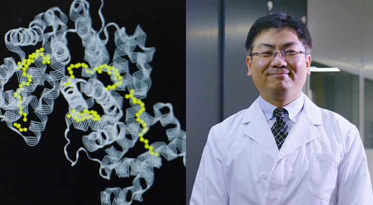 新しい発見は、しっかりとした基礎研究の土台があってこそ。熱力学で分子認識のメカニズムを解き明かす。